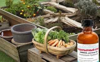 Нашатырный спирт для сада и огорода: применение аммиака для подкормки и от садовых вредителей