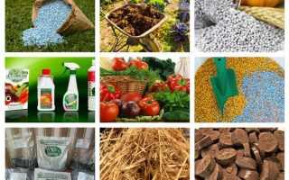Микроудобрения: какие бывают – виды, примеры, значение для растений, инструкция по применению