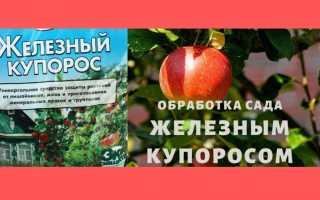 Железный купорос (сульфат железа 2): формула, применение в садоводстве весной и осенью, как сделать в домашних условиях, где купить