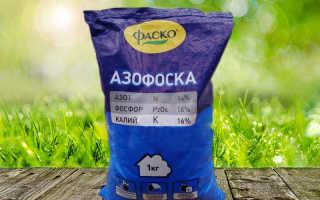 Азофоска: инструкция по применению минерального удобрения, состав, цена, где купить, виды