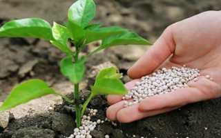 Нитрофоска: состав удобрения, инструкция по применению на огороде весной, формула, отличия от нитроаммофоски