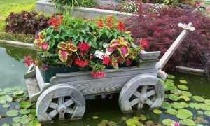Дизайн сада и огорода своими руками: картинки, иллюстрации и фото, как красиво оформить сад-огород