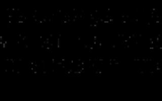 Пахиподиум: фото, уход в домашних условиях, мадагаскарская пальма, Ламера, биспинозум, размножение