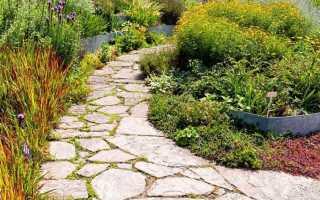 Садовые дорожки своими руками: фото, чертежи и варианты дизайна