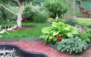 Садовая бордюрная лента для грядок, клумб, газона, дорожек, как правильно установить, цена