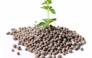 Азотные удобрения: какие относятся, значение и применение, виды азотсодержащих минеральных подкормок, состав