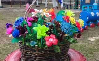 Поделки из пластиковых бутылок своими руками пошагово: цветы, животные для детской площадки
