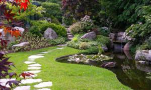 Английский сад, ландшафтный дизайн: как создать сад в английском стиле, описание декоративных качество сада в английском стиле