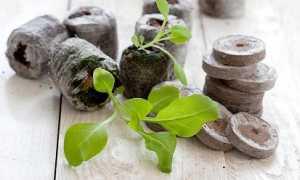 Гумат калия и натрия жидкие: состав, инструкция по применению, способы внесения, почем можно купить