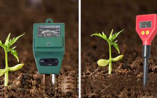 Как определить кислотность почвы самостоятельно в домашних условиях: приборы и методы