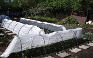 Парники из дуг с укрывным материалом для теплиц: виды, почем можно купить, как рассчитать длину